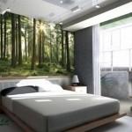 фотообои лесные деревья утром